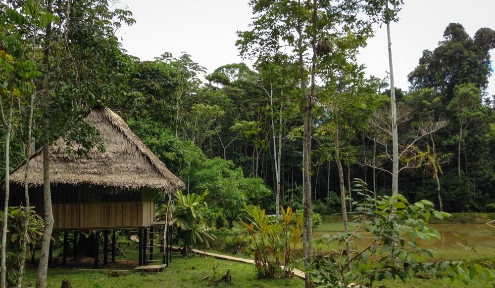 1 - Iquitos #006 (IMG_2185)
