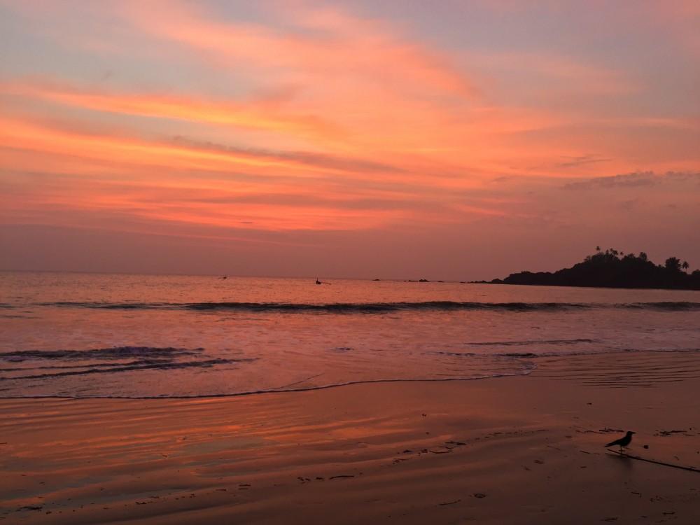 3 - Goa #04 (IMG_5484)