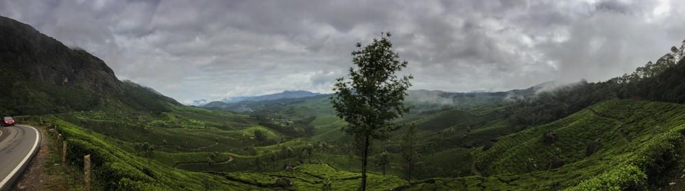 3 - Kerala #01 (IMG_5751)