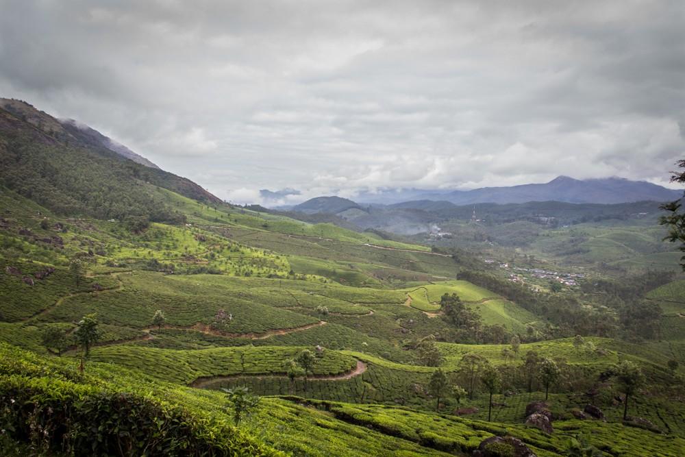 3 - Kerala #03 (IMG_2781)