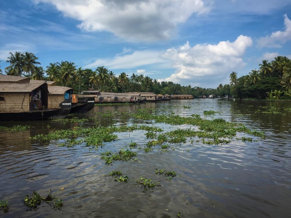 3 - Kerala #23 (IMG_6097)