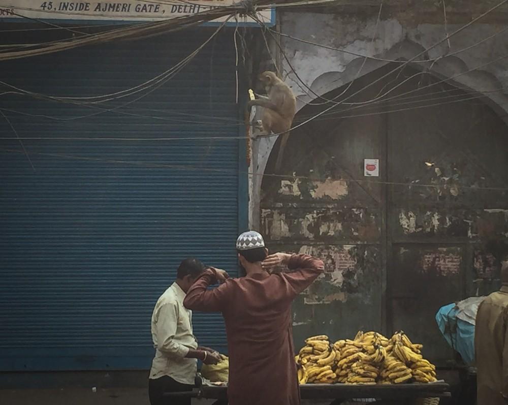 4 - Delhi #02 (IMG_6392)