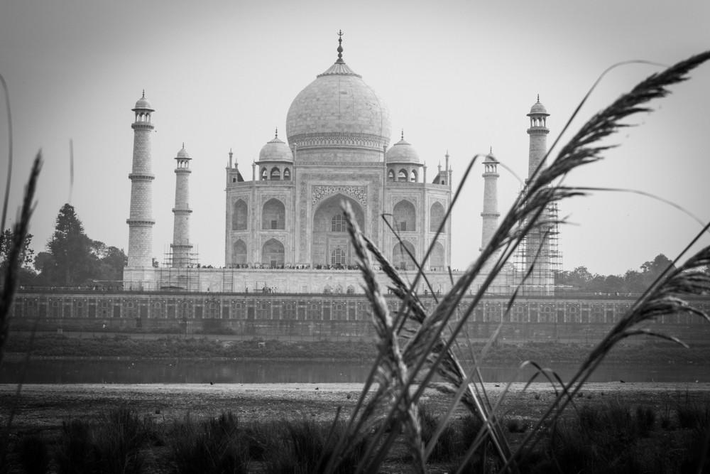 5 - Agra #11 (IMG_3414)