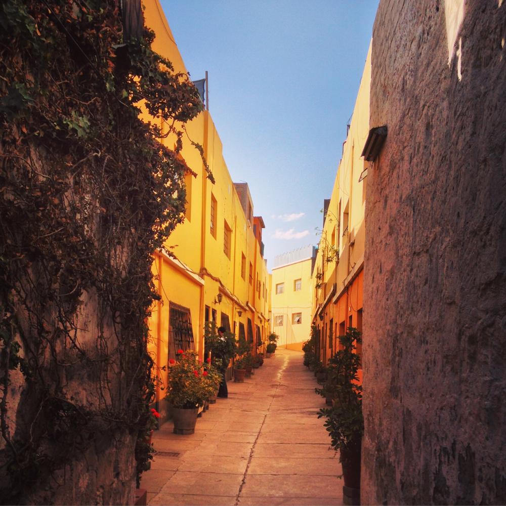 #9 - Arequipa #06 (IMG_4502)
