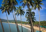 5 Reasons You Should Want to Go to Goa