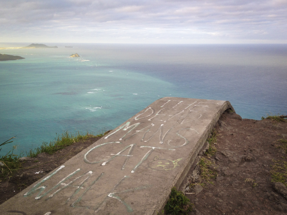 Hawaii 019 (IMG_5959)