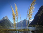 Kayaking Milford Sound (in Photos)
